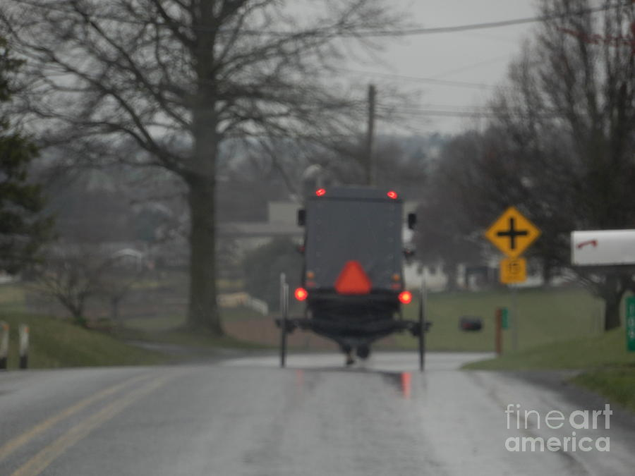 Amish Photograph - Buggy Approaching A Curve In The Road by Christine Clark