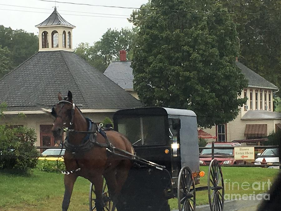 Amish Photograph - Buggy Travels By by Christine Clark