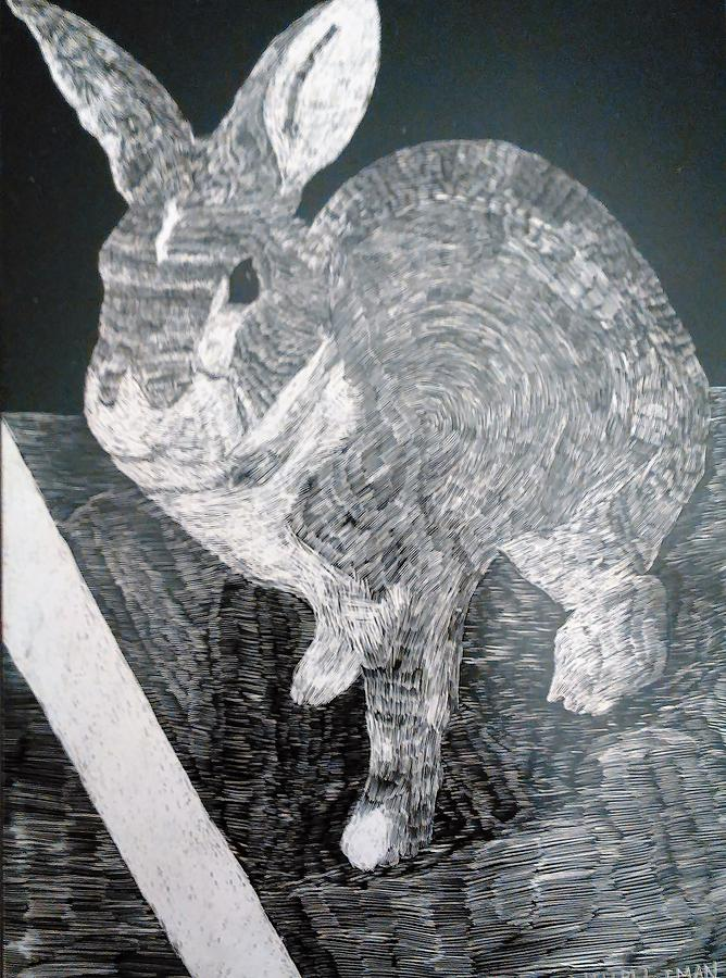 Scratchboard Mixed Media - Bugsy the Rabbit by Andrew Blitman