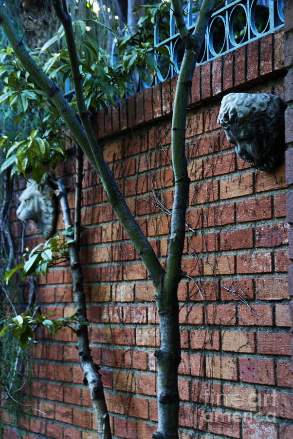 Brick Photograph - Building Walls by Linda Shafer
