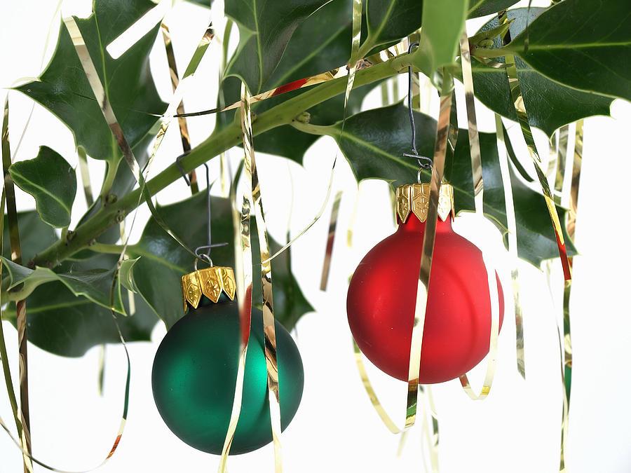 Christmas Photograph - Bulbs On Holly by Robert Gebbie