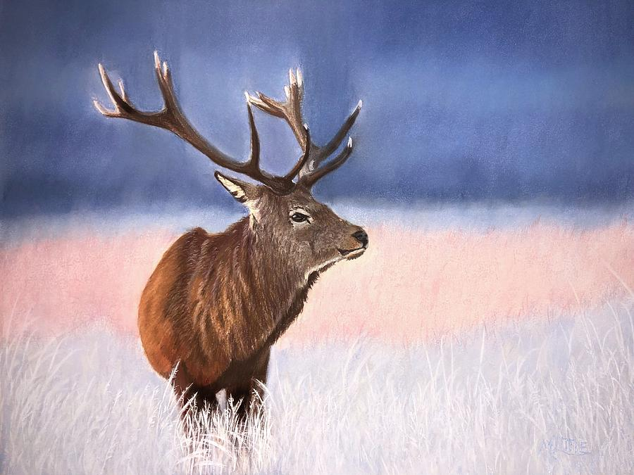 Red Stag by Marlene Little