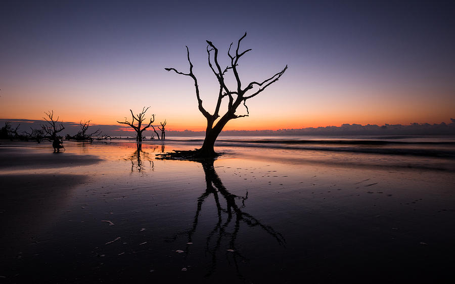 Bull Island Shooter, Charleston SC by Tommy  White