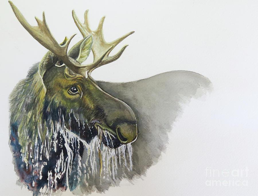 Bull Moose Watercolor Painting