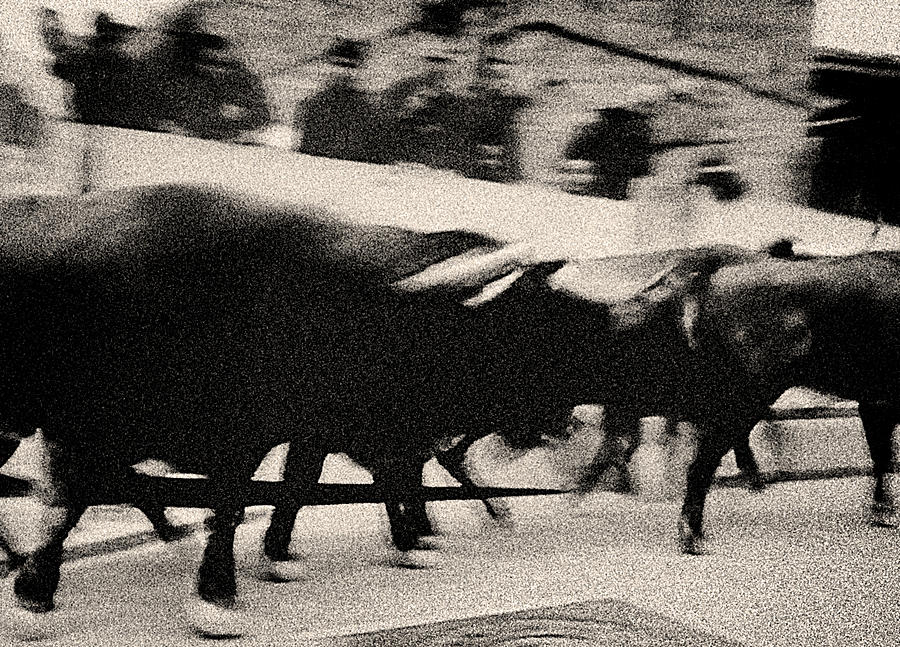San Fermin Photograph - Bull Run 3 by Rafa Rivas