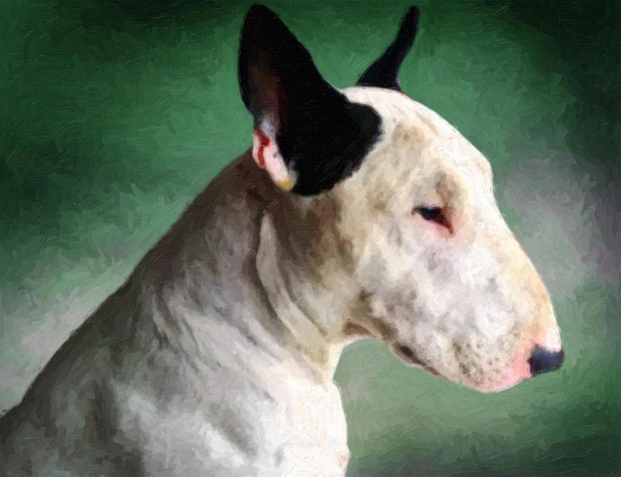 English Bull Terrier Painting - Bull Terrier on Green by Michael Tompsett