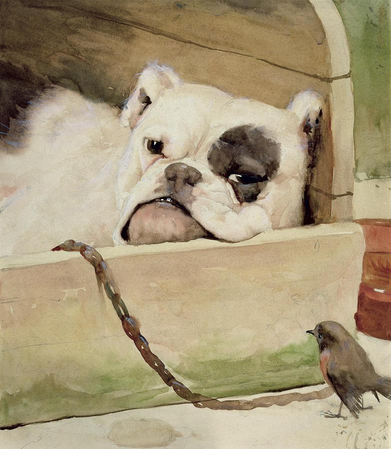 Bull Dog; Robin; Bird; Kennel; Pet Painting - Bulldog by Cecil Charles Windsor Aldin