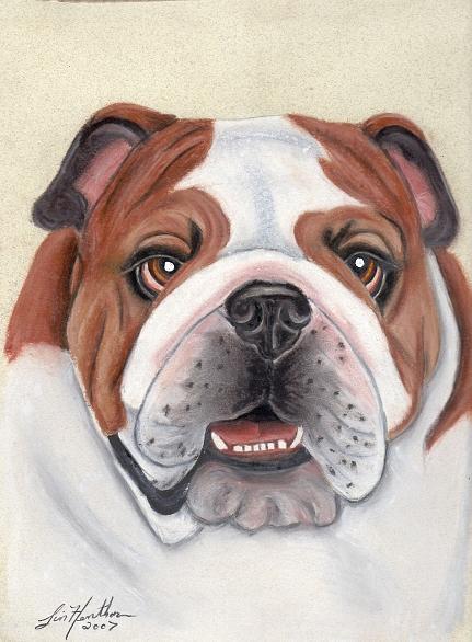 Dog Painting - Bulldog by Linda Henthorn
