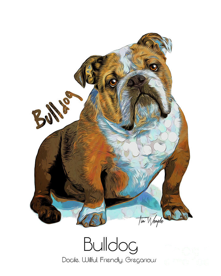 Bulldog Digital Art - Bulldog Pop Art by Tim Wemple