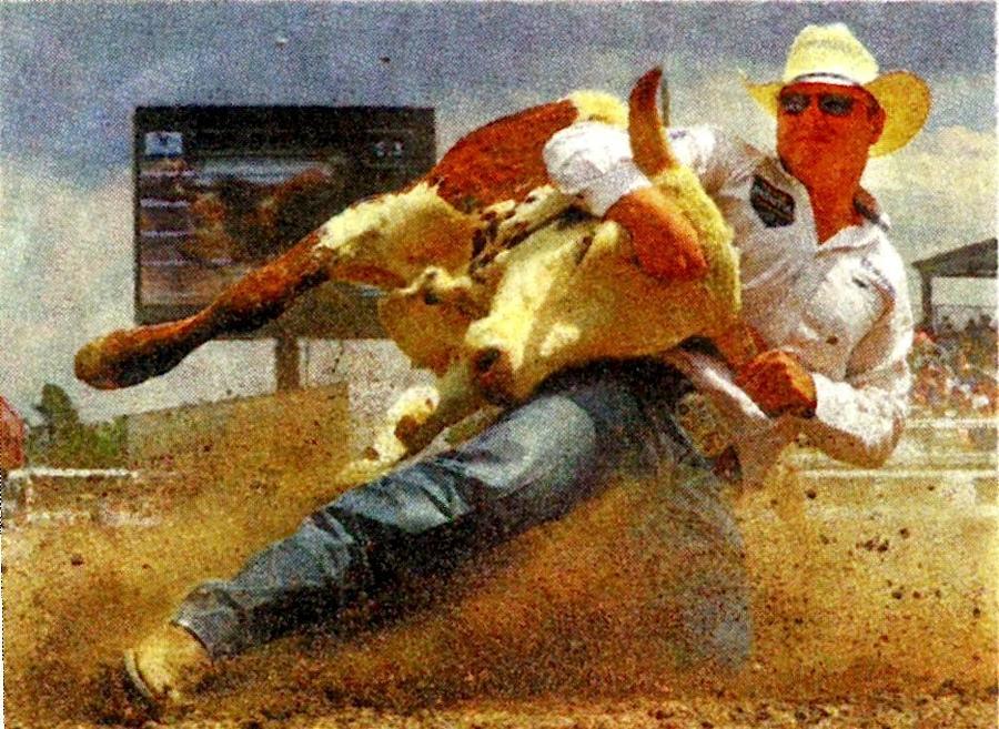 Action Painting - Bulldoggn by Joseph Barani