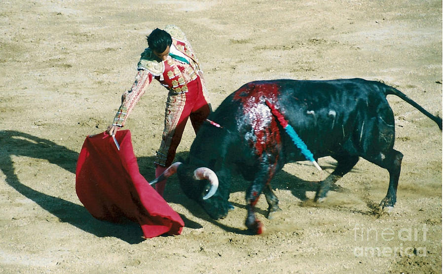Bullfighter Photograph by Brent Easley