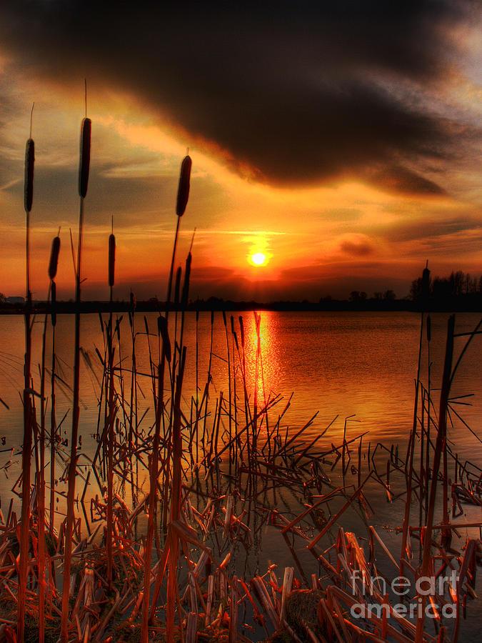 Bullrush Pictures Photograph - Bullrush Sunset by Kim Shatwell-Irishphotographer