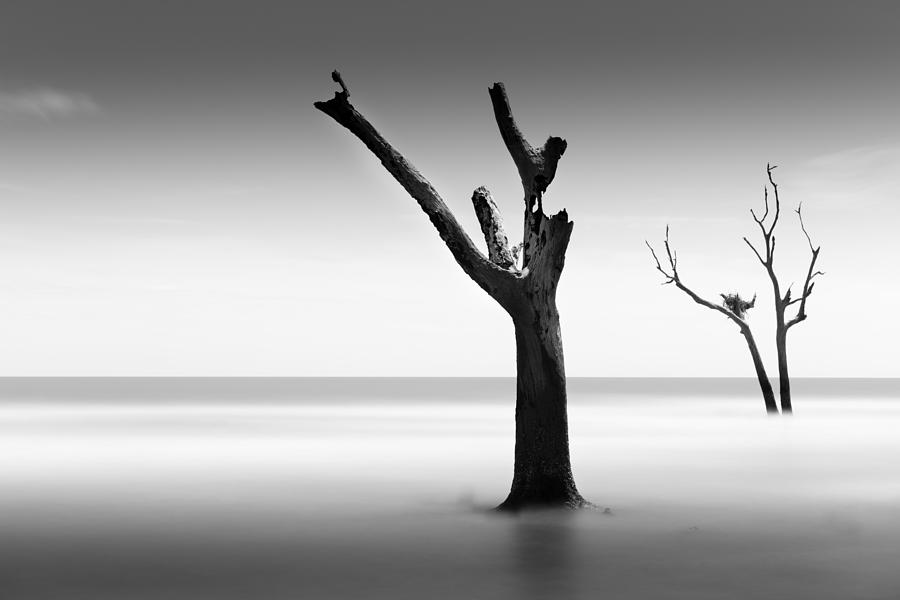 Bulls Island Photograph - Bulls Island Vii by Ivo Kerssemakers