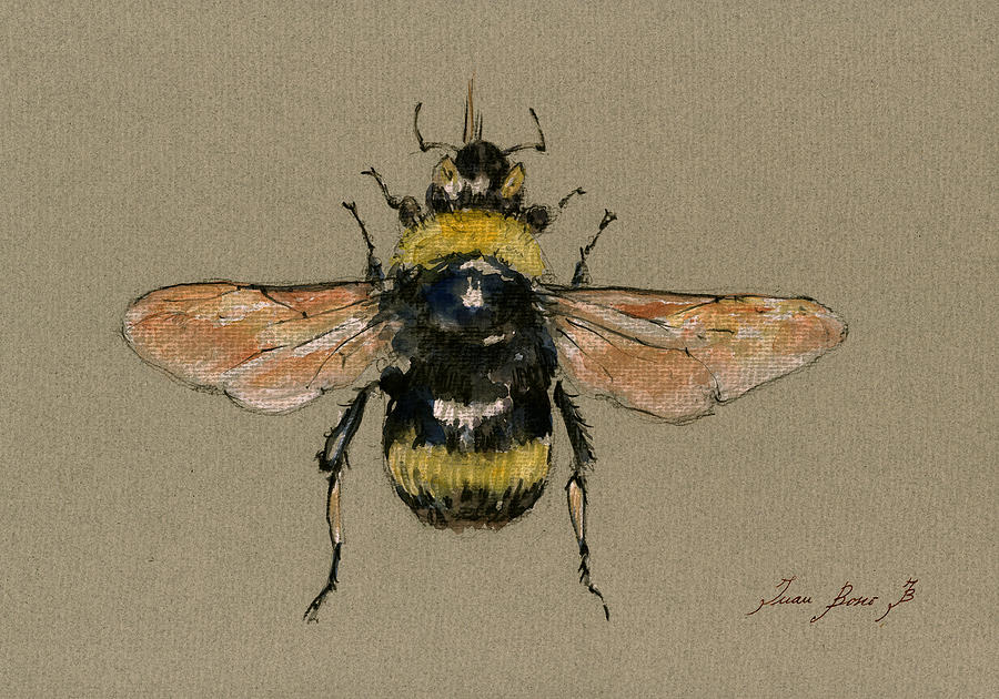 Bumble Bee Painting - Bumble Bee Art Wall by Juan  Bosco