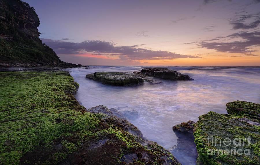 Bungan Beach Photograph - Bungan Beach Australia by Leah-Anne Thompson