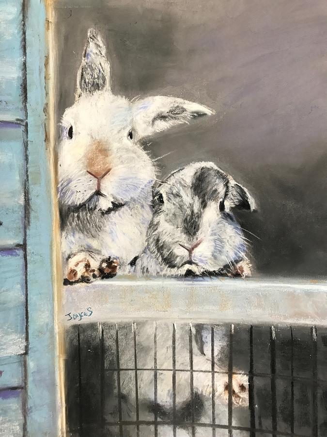 Bunny Buddies by Joyce Spencer