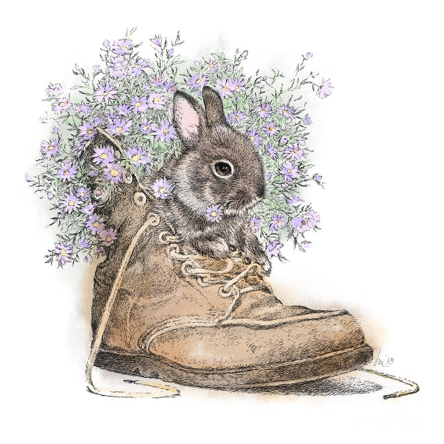 Bunny Drawing - Bunny In Boot by Laurie Musser