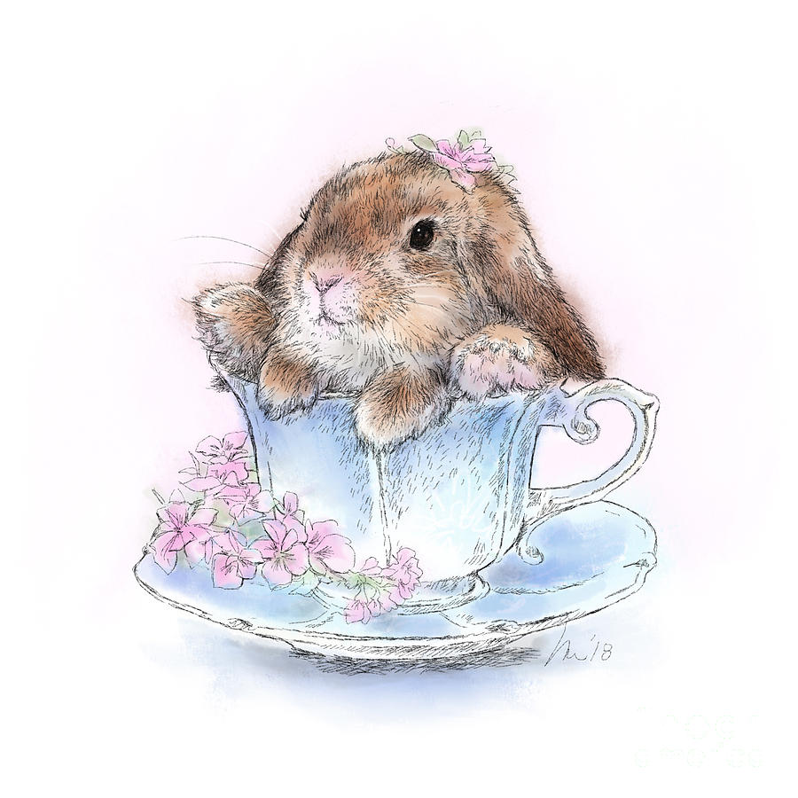 Bunny Drawing - Bunny in Teacup by Laurie Musser