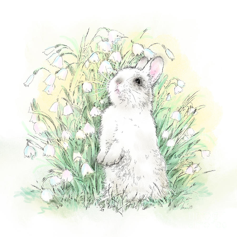 Bunny Drawing - Bunny In White by Laurie Musser