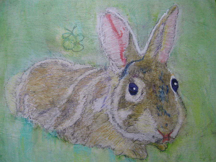 bunny named Rocket by AJ Brown
