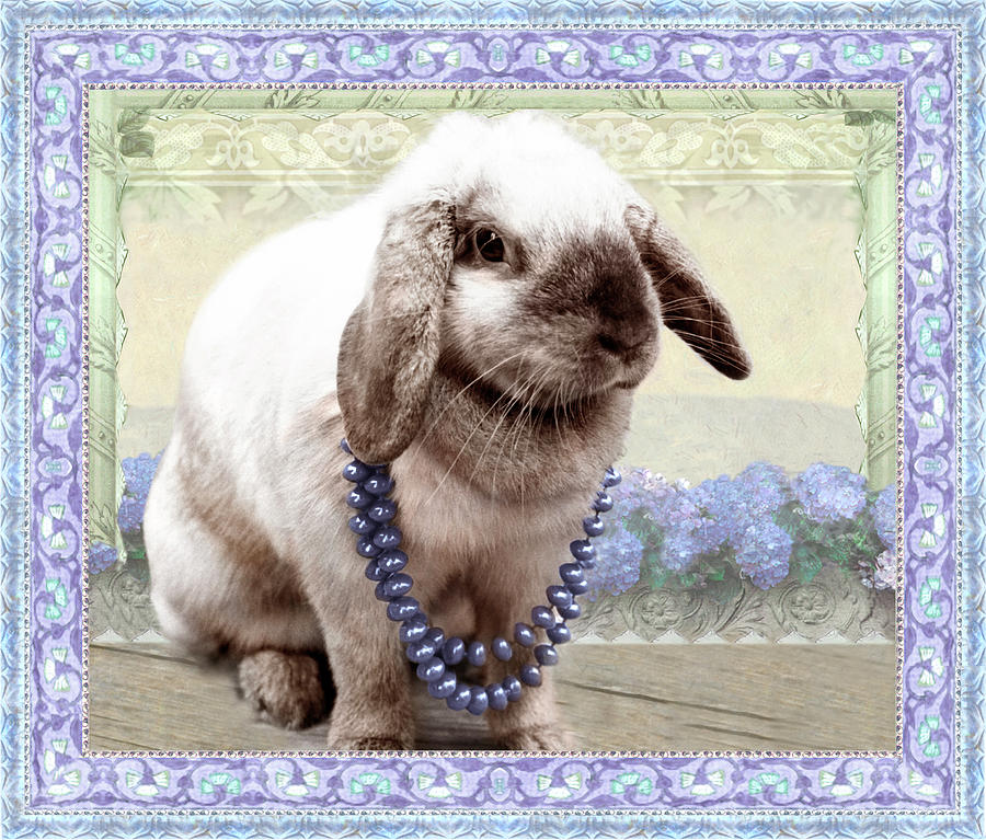 Bunny Wears Beads by Adele Aron Greenspun
