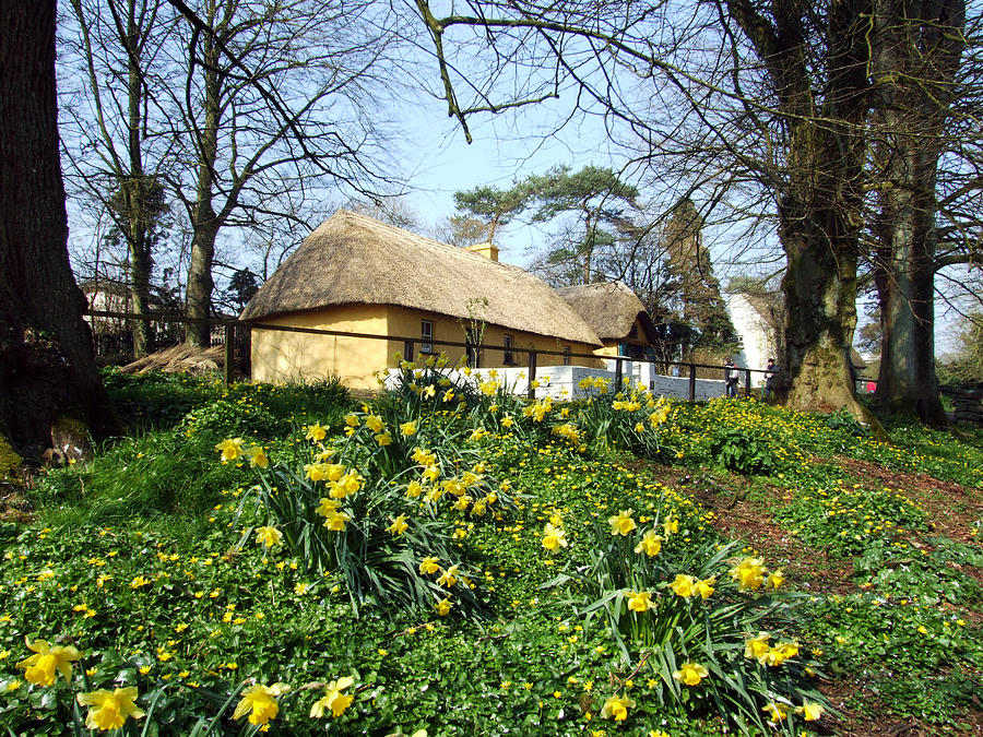 Bunratty Photograph - Bunratty Cottage by John Quinn