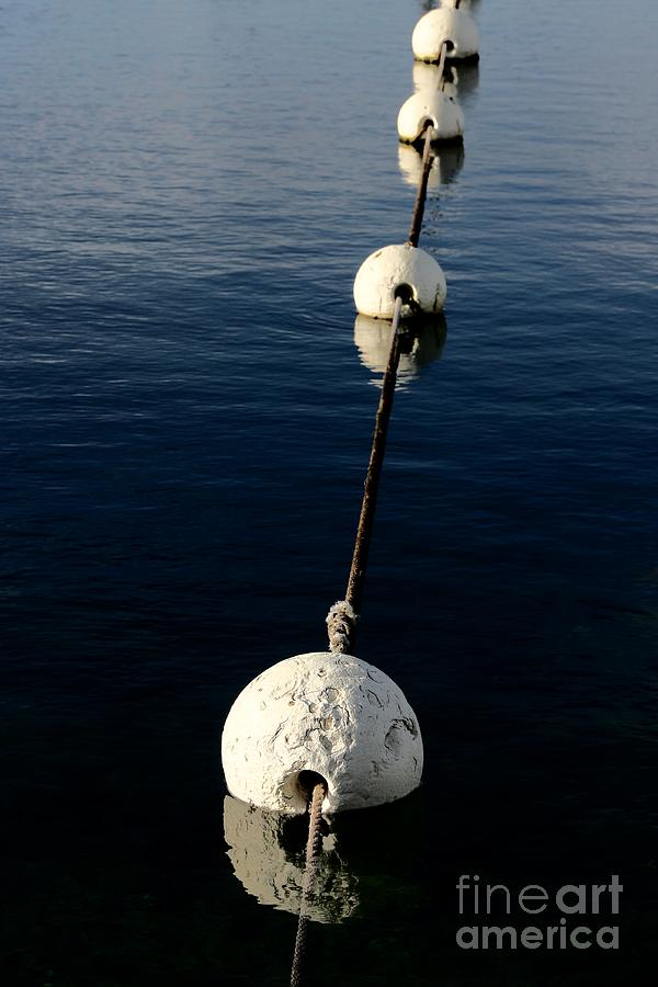 Descend Photograph - Buoy Descending by Stephen Mitchell