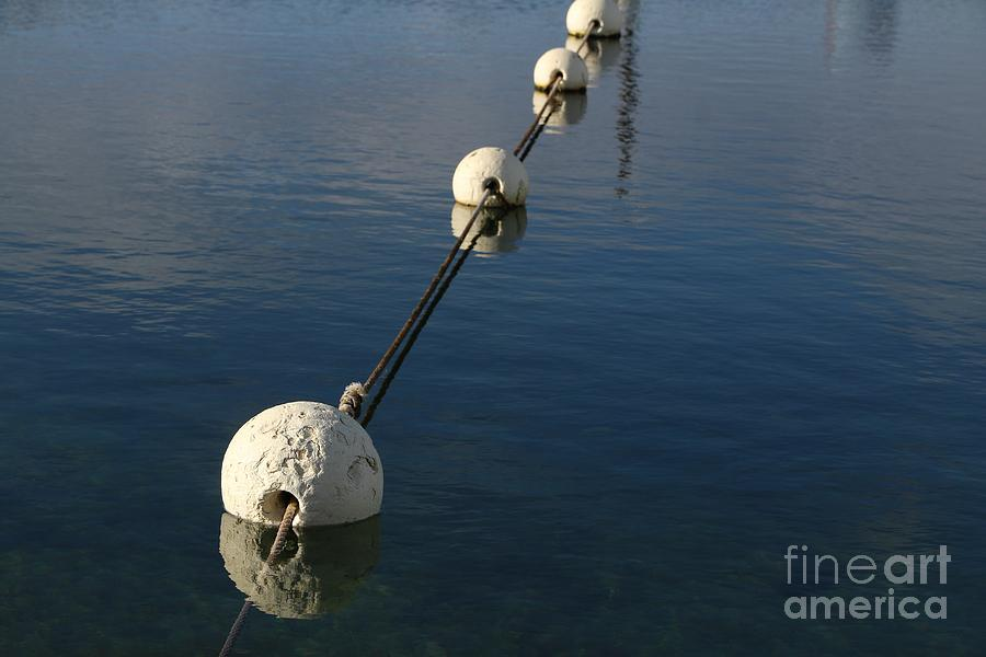 Buoy Photograph - Buoys In Aligtnment by Stephen Mitchell