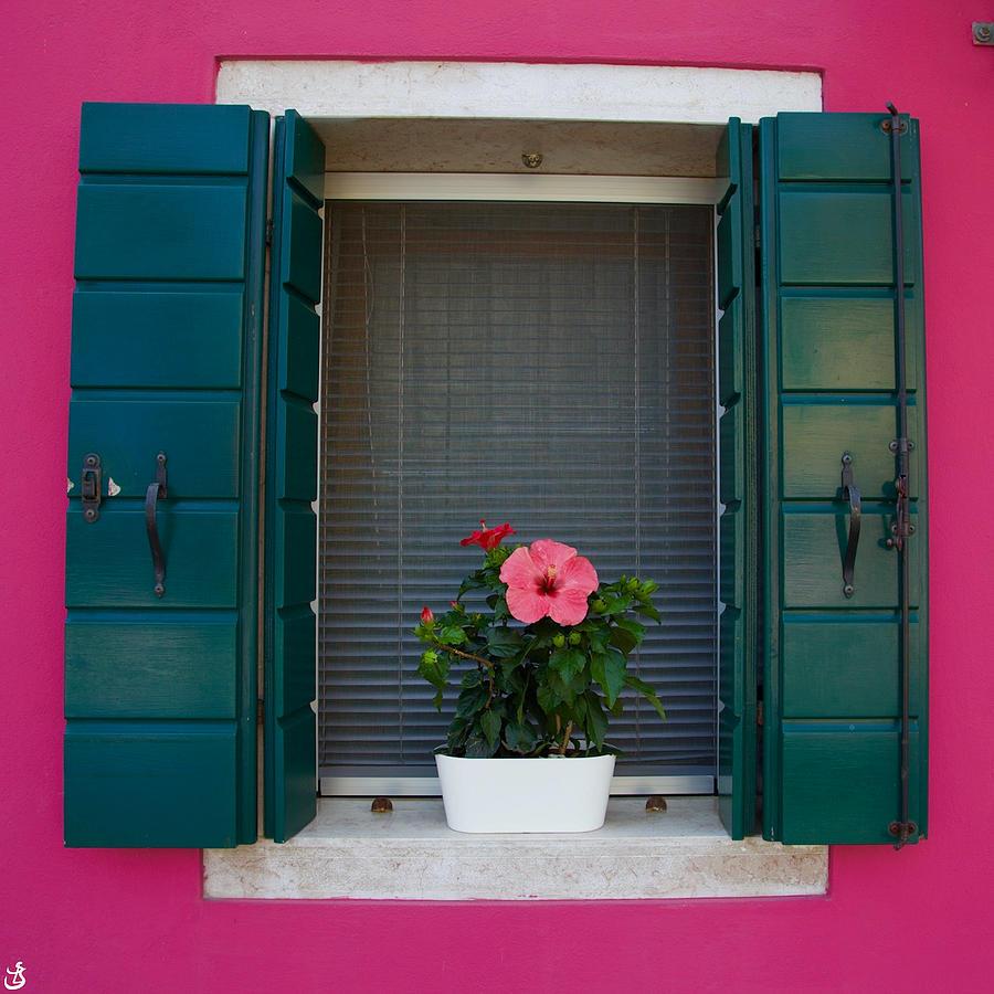 Burano's window I by Sarah-l Singer