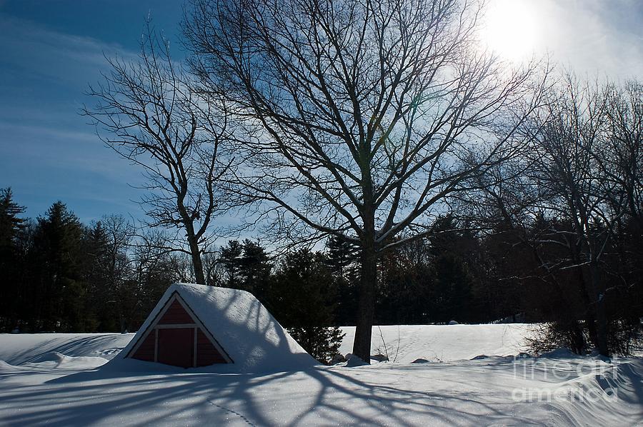 Sunshine Photograph - Buried In Snow by Frank Garciarubio