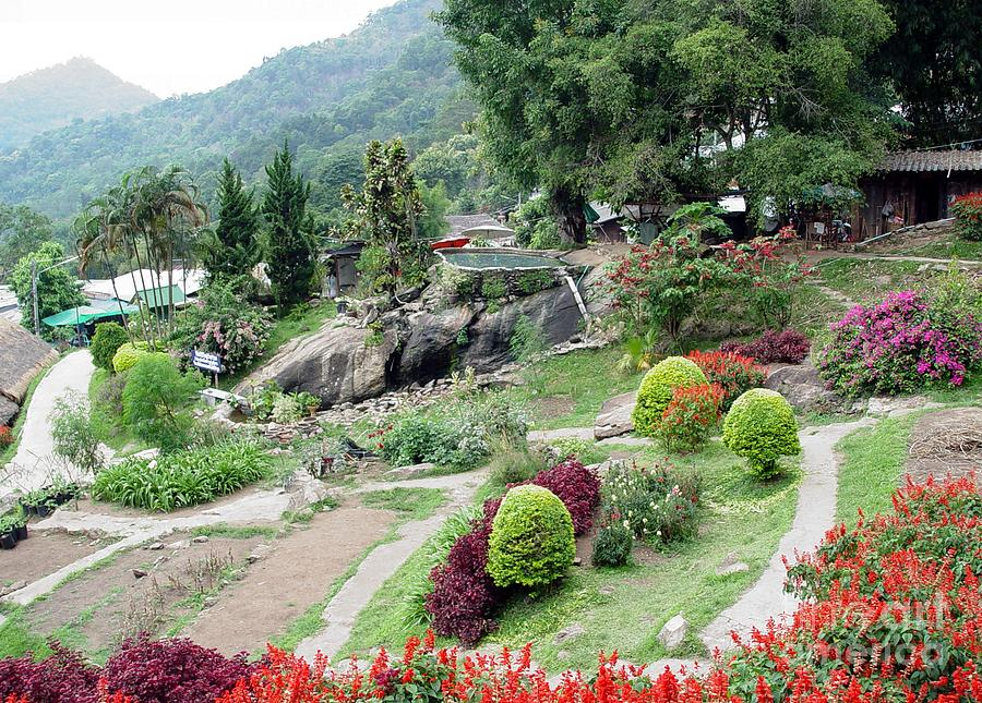 Burma Village Garden And Pond Photograph by John Johnson