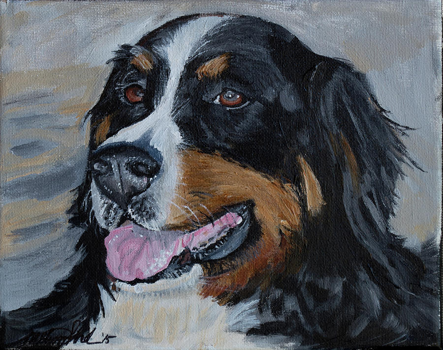 Burmese Mountain Dog by MKD Lincoln
