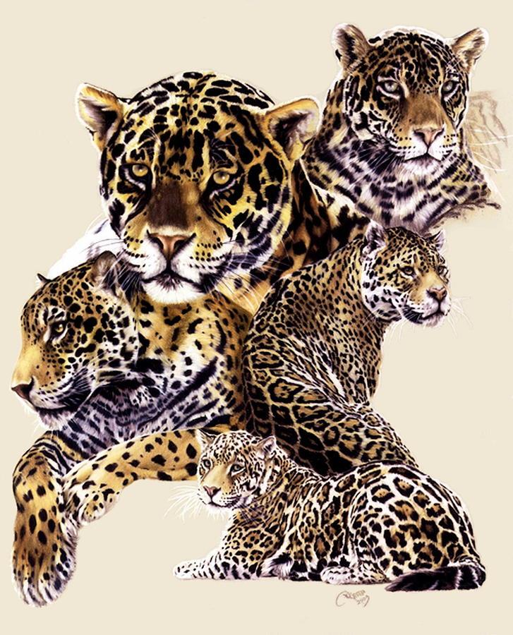 Jaguar Drawing - Burn by Barbara Keith