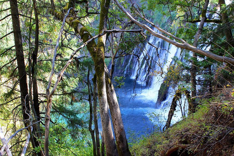 Landscape Photograph - Burney Falls Trailside II by FlyingFish Foto