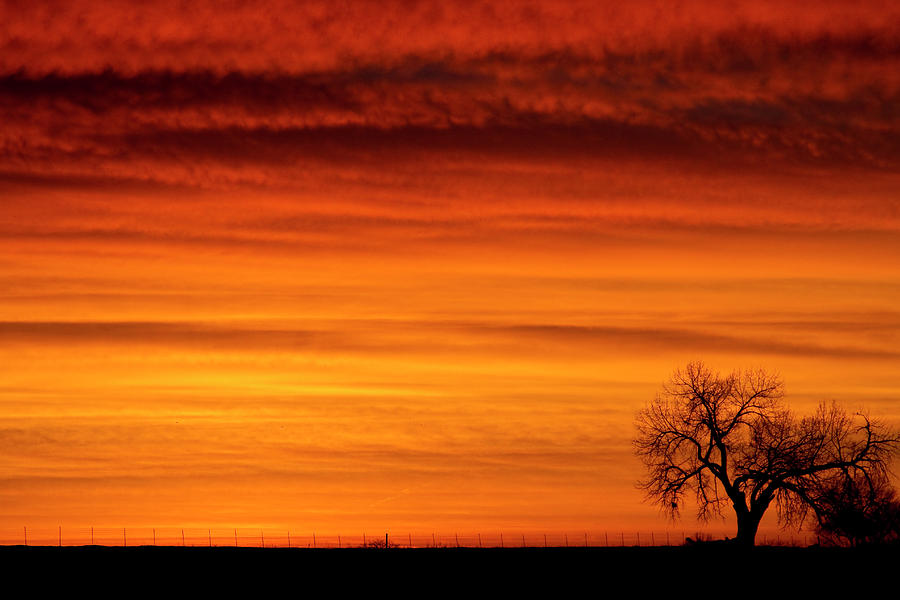 Country Prints Photograph - Burning Country Sky by James BO  Insogna