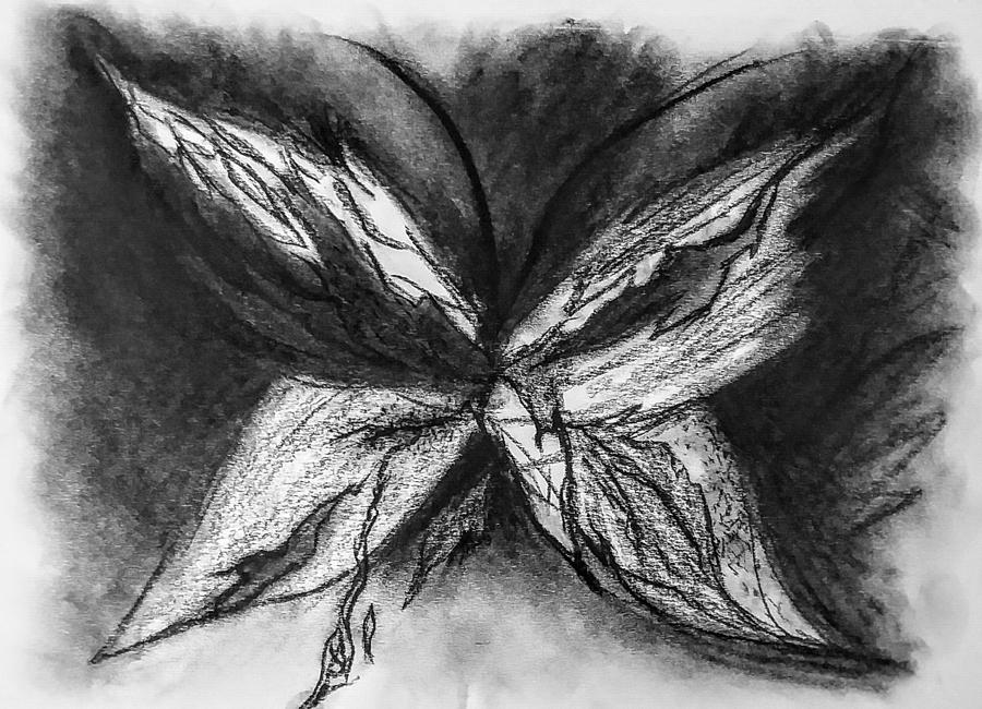 Burning butterfly drawing