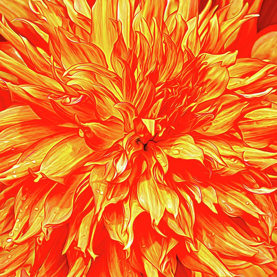 Burning Love Photograph
