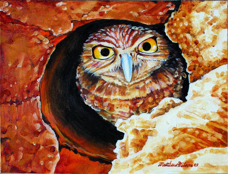 Burrowing Owl Painting - Burrowing Owl by Matthew Milone