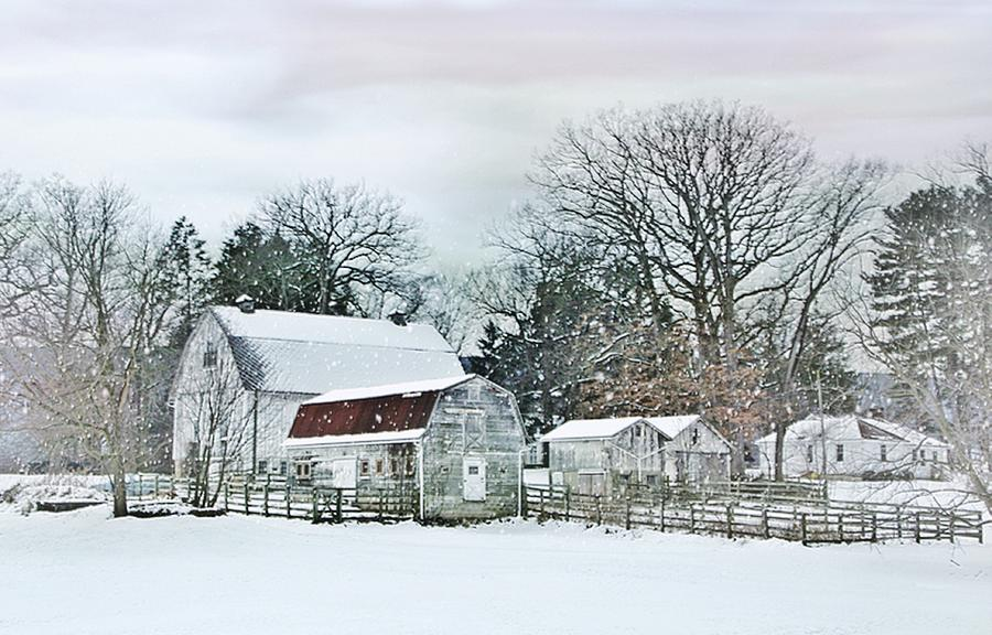 Barns Photograph - Bush Barn by Stephanie Calhoun