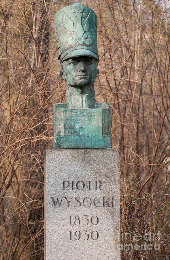 Architecture Photograph - Bush Behind Piotr Wysocki Bust by Arletta Cwalina