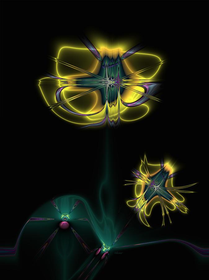 Fractal Digital Art - Bush Poppy by Harmen Wiersma