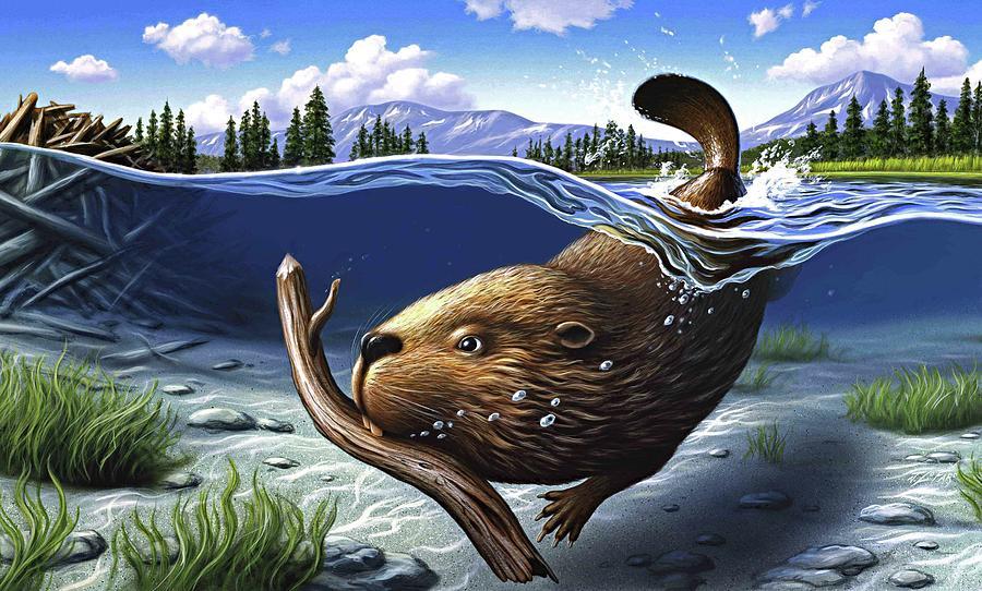 Beaver Digital Art - Busy Beaver by Jerry LoFaro