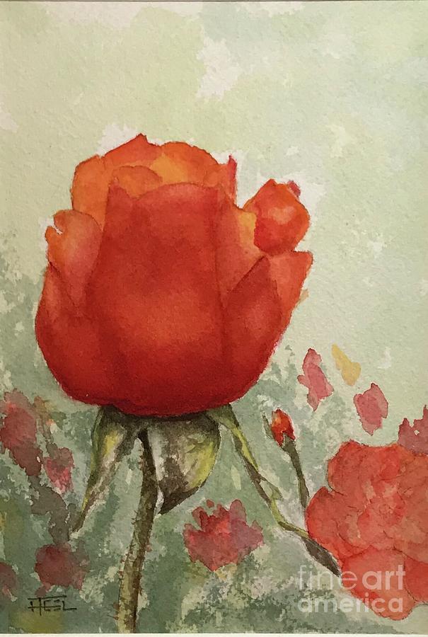 Butchart Rose by Harold Teel