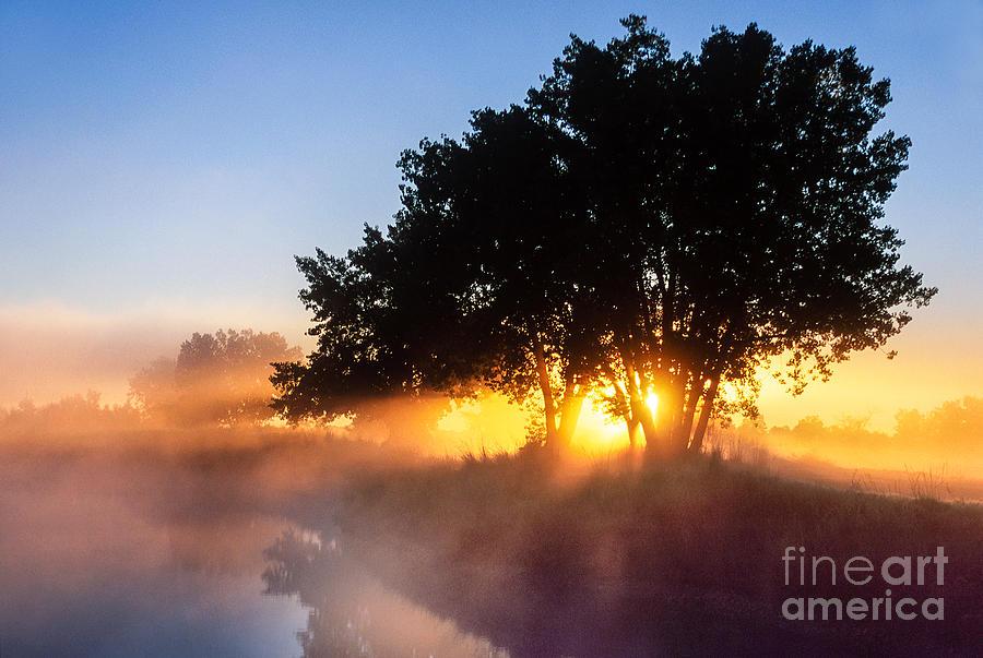 Beautiful Photograph - Buttercup Sunrise by Greg Summers