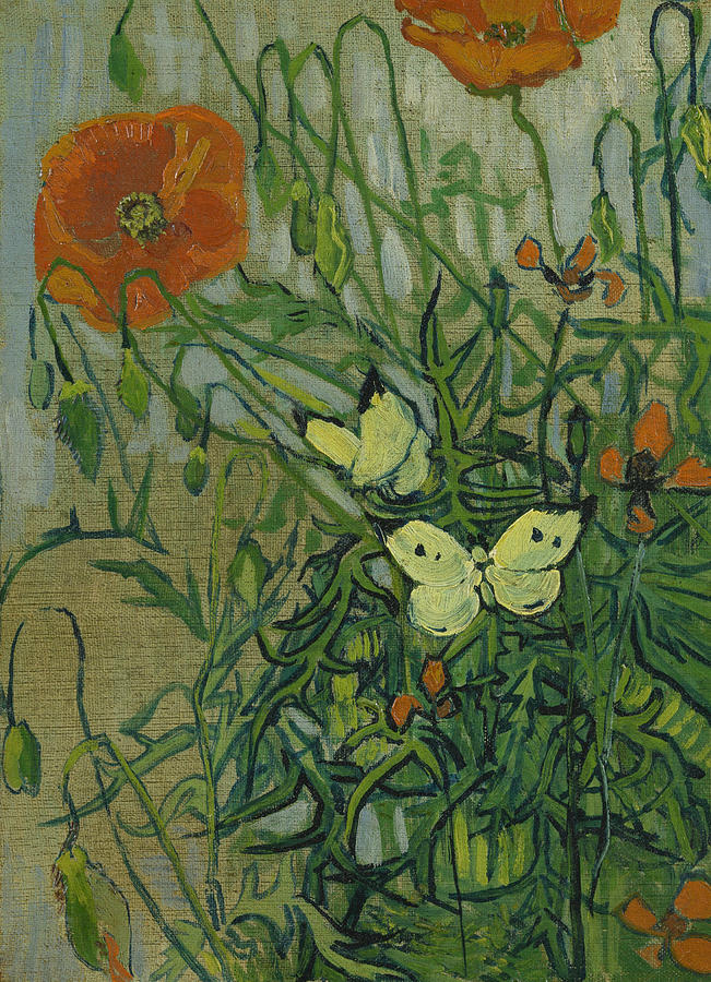 Van Gogh Painting - Butterflies And Poppies, 1890.  by Vincent van Gogh