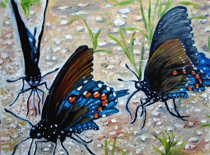 Butterfly Painting - Butterflies Original Oil Painting by Natalja Picugina