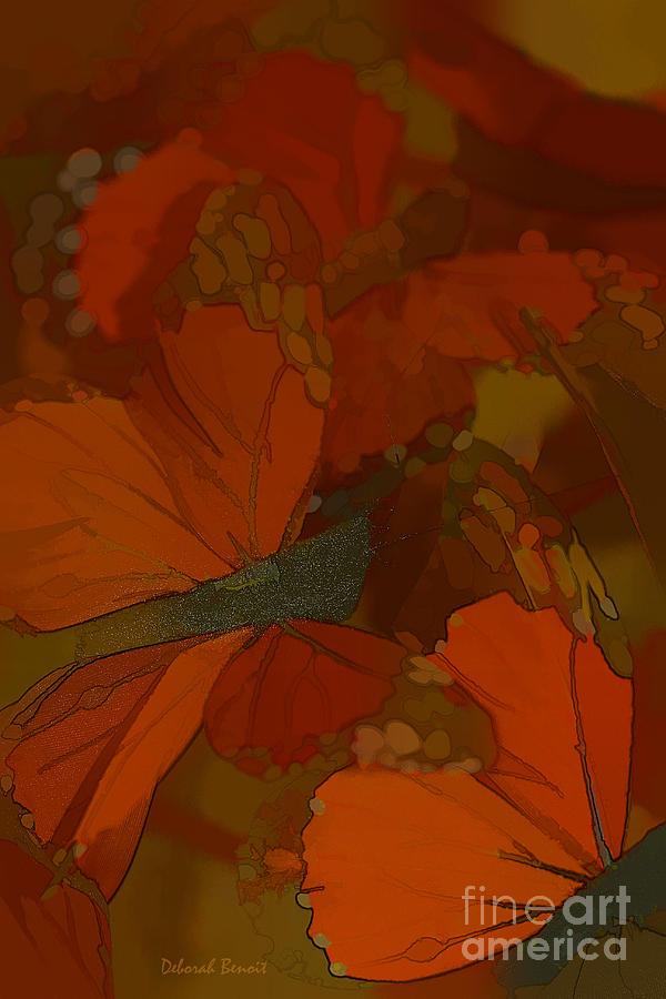 Butterflies Photograph - Butterfly Abstract by Deborah Benoit