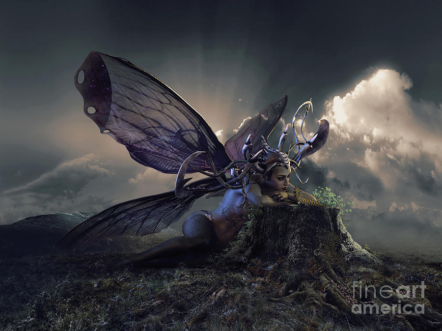 Butterfly And Caterpillar Digital Art