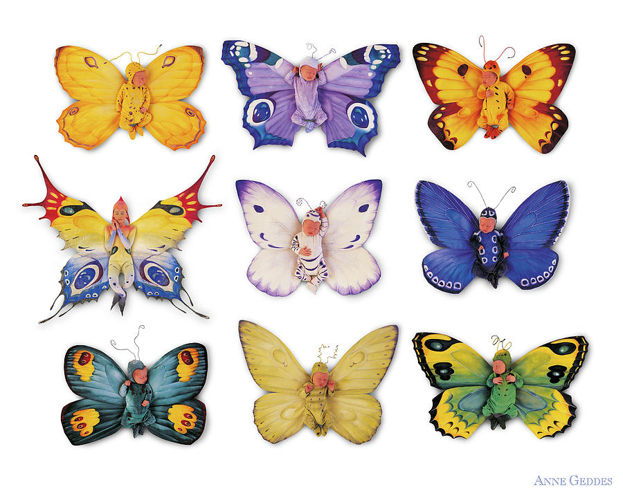 Butterfly Photograph - Butterfly Babies by Anne Geddes