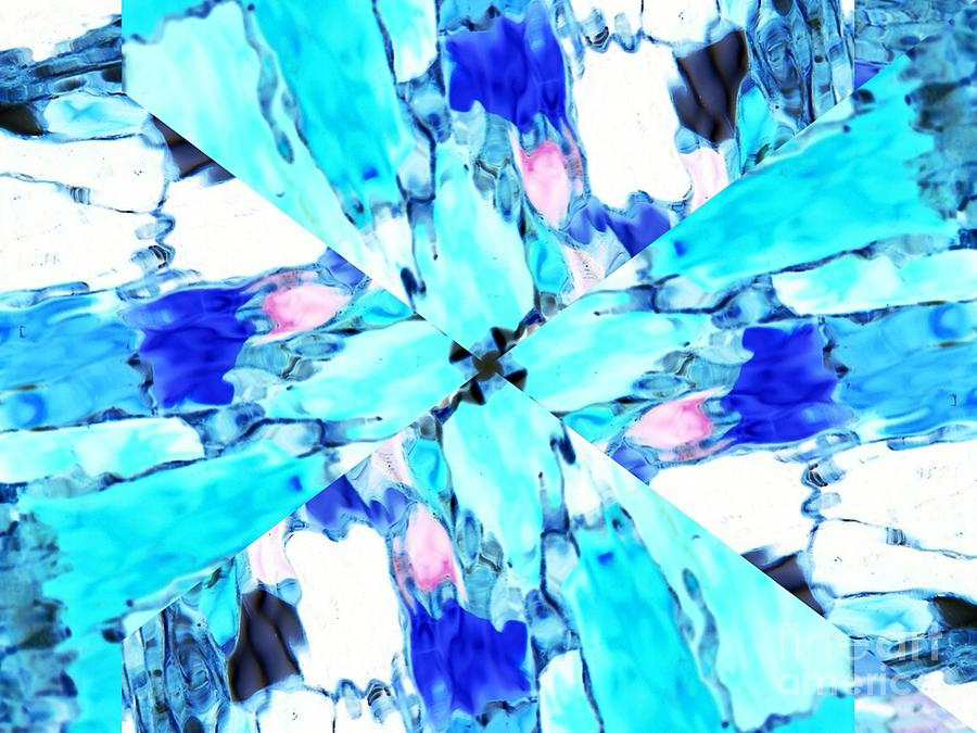 Abstract Digital Art - Butterfly Blue by Lorles Lifestyles